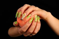 Free Nails Stock Image - 13599001