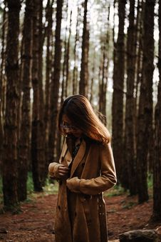 Free Woman Standing Between Tree Line Stock Photography - 135955322