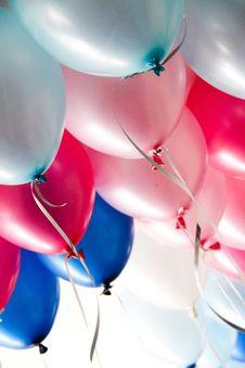 Free Blue, Red, Balloon, Petal Royalty Free Stock Photo - 135981955