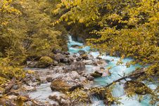 Free Water, Nature, Stream, Nature Reserve Stock Photo - 135982630