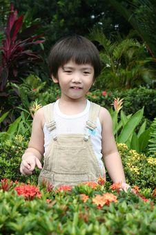 Boy At Garden Royalty Free Stock Photography