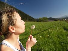 Free Girl Blowing Seeds Out Of A Dandelion Stock Photography - 1362562