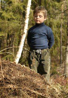 Boy And Ant-hill Stock Photography