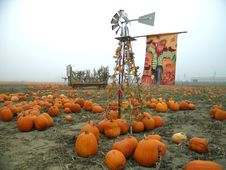 Free Pumpkin Patch Windmill Royalty Free Stock Photography - 1364267