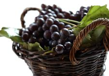 Free Grapes Stock Images - 1365194