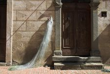Free Doorway. Stock Photography - 1365872