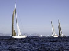 Free Regatta Royalty Free Stock Photography - 1366297