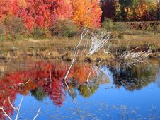Free Autumn Lake Reflection Royalty Free Stock Photography - 1366627