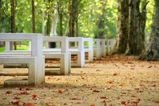 Free Benches In A Row Stock Photo - 1367400