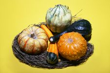 Free Gourds Arrangement Stock Photography - 1369652