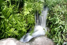 Free Small Waterfall In Grass Royalty Free Stock Photos - 1369688