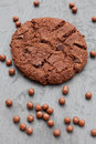 Free Chocolate Chip Cookie With Small Chocolate Balls Stock Image - 13605191
