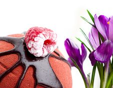 Crocus And Cake Stock Photos