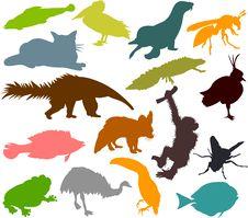 Free Animal_silhouettes07 Stock Photo - 13600780