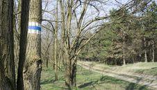 Free Tour Route Stock Image - 13602041