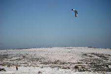 Free Kite Skiier Stock Photos - 13604203