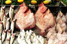 Free Fish Market Stock Image - 13604401