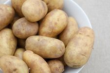 Free Bowl Of Potatoes Stock Images - 13605144