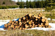 Free Firewood Stock Image - 13605721