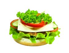 Free Cheeseburger Royalty Free Stock Photography - 13606067