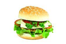 Free Cheeseburger Royalty Free Stock Photos - 13606098