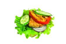 Free Cheeseburger Stock Photos - 13606423