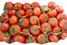 Free It Is A Lot Of Tomatoes Stock Images - 13607424
