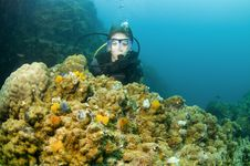 Scuba Diver With Colorful Coral Royalty Free Stock Images