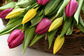 Free Tulips In The Basket Stock Photos - 13617593