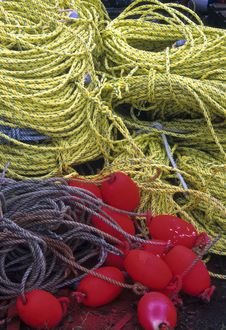 Free Rope And Crab Trap Buoys Stock Photography - 13614002