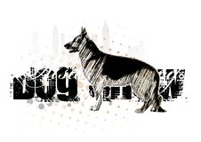 Free Alsatian Dog On The Horizontal Poster Royalty Free Stock Image - 13615816