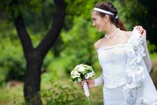 Free A Bride Near The Tree Royalty Free Stock Photography - 13616637