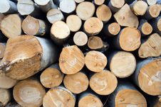 Free Pile Of Wooden Logs In Deforestation Area Texture Stock Image - 13617501