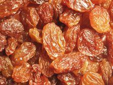 Glazed Raisins Royalty Free Stock Photography
