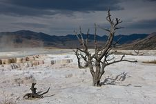Stark Vista - Mammoth Hot Springs Stock Photos