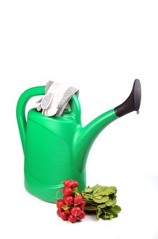 Free Green Watering Can, Royalty Free Stock Image - 13621336