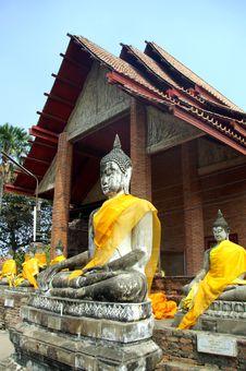 Free Sitting Buddhas Stock Photo - 13621670
