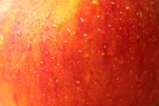 Free Apple Closeup Royalty Free Stock Images - 13624609