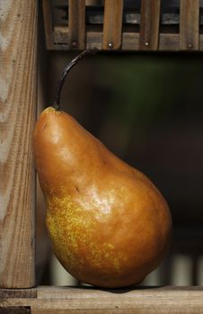 Free Pear Royalty Free Stock Photography - 13624887