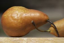Free Pears Royalty Free Stock Image - 13624896