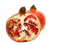 Free Pomegranates. Royalty Free Stock Image - 13628666