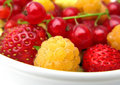 Free Fresh Berries Royalty Free Stock Photography - 13635107