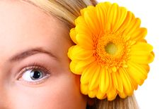 Eye Woman And Flower Royalty Free Stock Photo