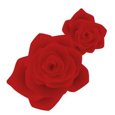 Free Red Rose Flower Royalty Free Stock Photo - 13633345