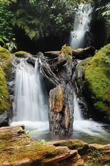 Natural Spring Waterfall Stock Photography