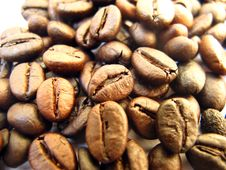 Free Coffee Background Stock Image - 13636411