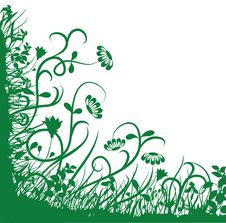 Free Green Flower Background Stock Images - 13636474