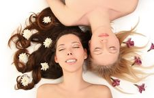 Free Blondy And Brunette Stock Images - 13636574