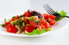 Free Tomato Salad Stock Images - 13636974