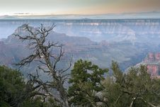 Free Grand Canyon Stock Images - 13637194